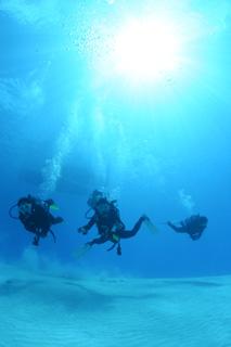 詳細求人情報1(契約社員) ダイビングインストラクターまたは見習い、接客販売 [株式会社ファイブステージ]