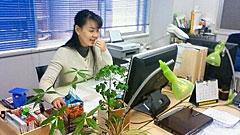 詳細アルバイト求人情報1(パート) 契約書類の作成・処理業務や、保険金請求書類作成業務です。 [有限会社東京リスクマネージメント]